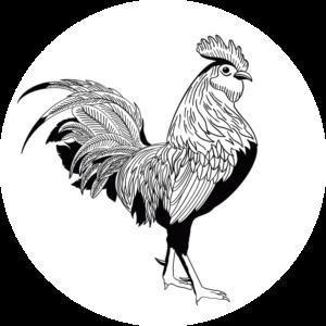 FIAB-Logo-Square